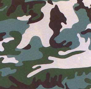 ANDY WARHOL Camouflage